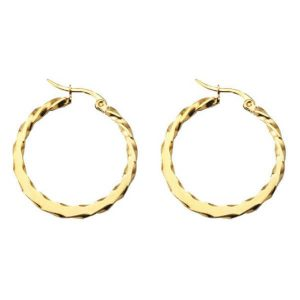 Stainless Steel Rose Gold Hoop Earring Small